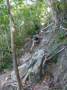 free climbing,...