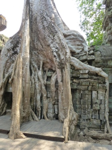 Scary roots at Ta Prohm