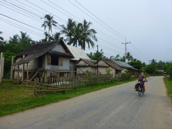 A typical Lao village