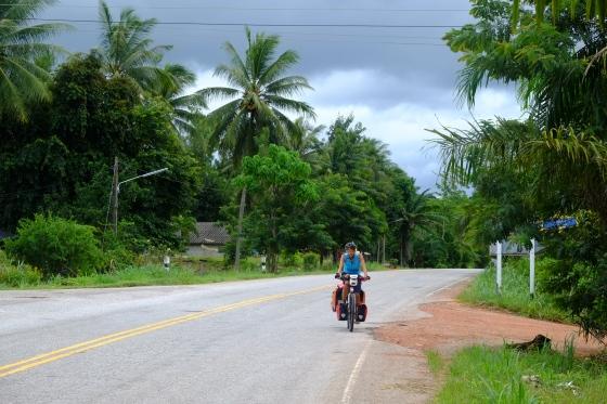 ...lush green jungle next to quiet roads,...