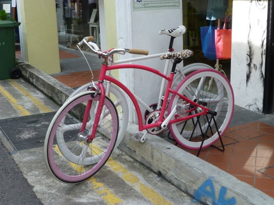 A fancy bike shop on Arab street