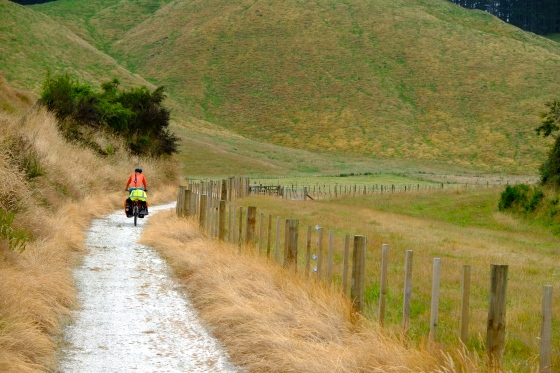 Another quiet cycle path on the way to Taupo