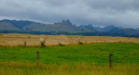 More amazing scenery on the way to Taupo