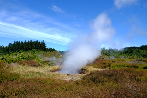 Craters of the moon close to Taupo